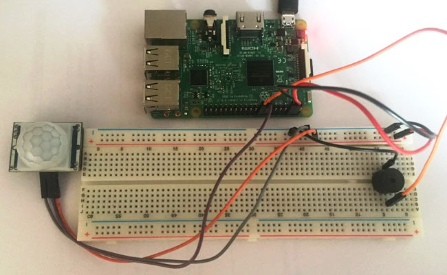 Внешний вид сигнализации с датчиком движения на Raspberry Pi