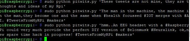 Передача твитов из Raspberry Pi