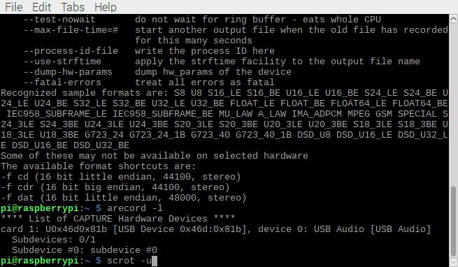 Все подключенные к плате Raspberry Pi устройства