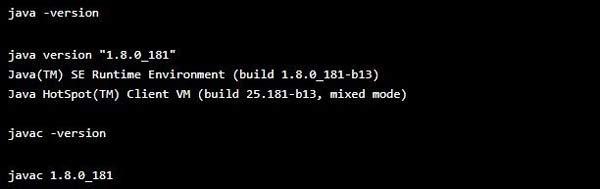 Проверка установки Java в плате Raspberry Pi